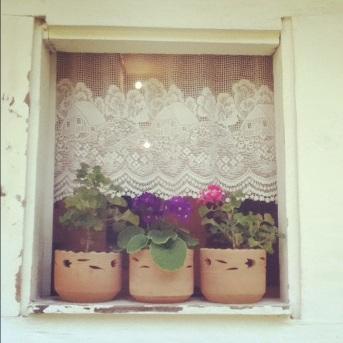 Uno de los detalles que más me llamo la atención de estas casas eran sus flores por todos lados, cada ventana es un jardín...