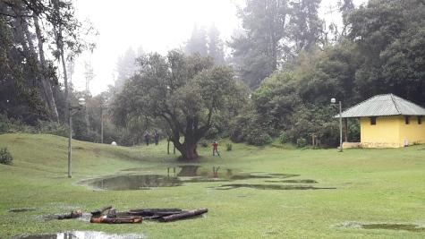 Reserva El Boliche